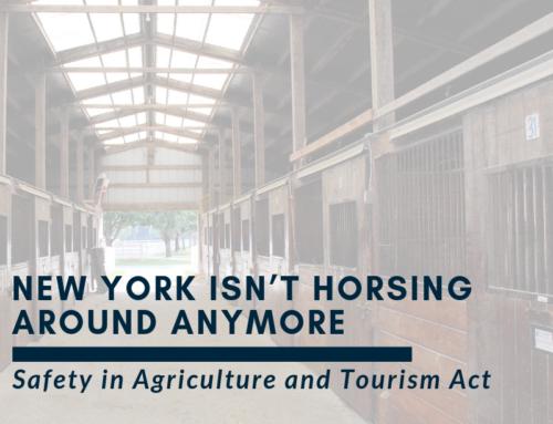 New York isn't Horsing Around Anymore