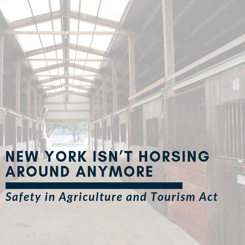 New York isn't Horsing Around Anymore