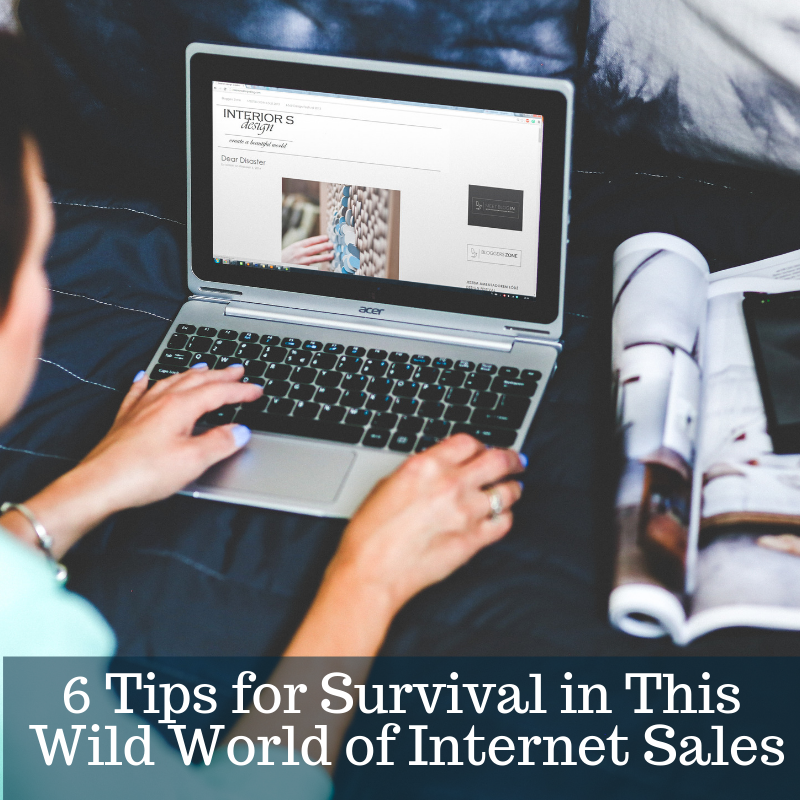 6 Tips for Survival in This Wild World of Internet Sales